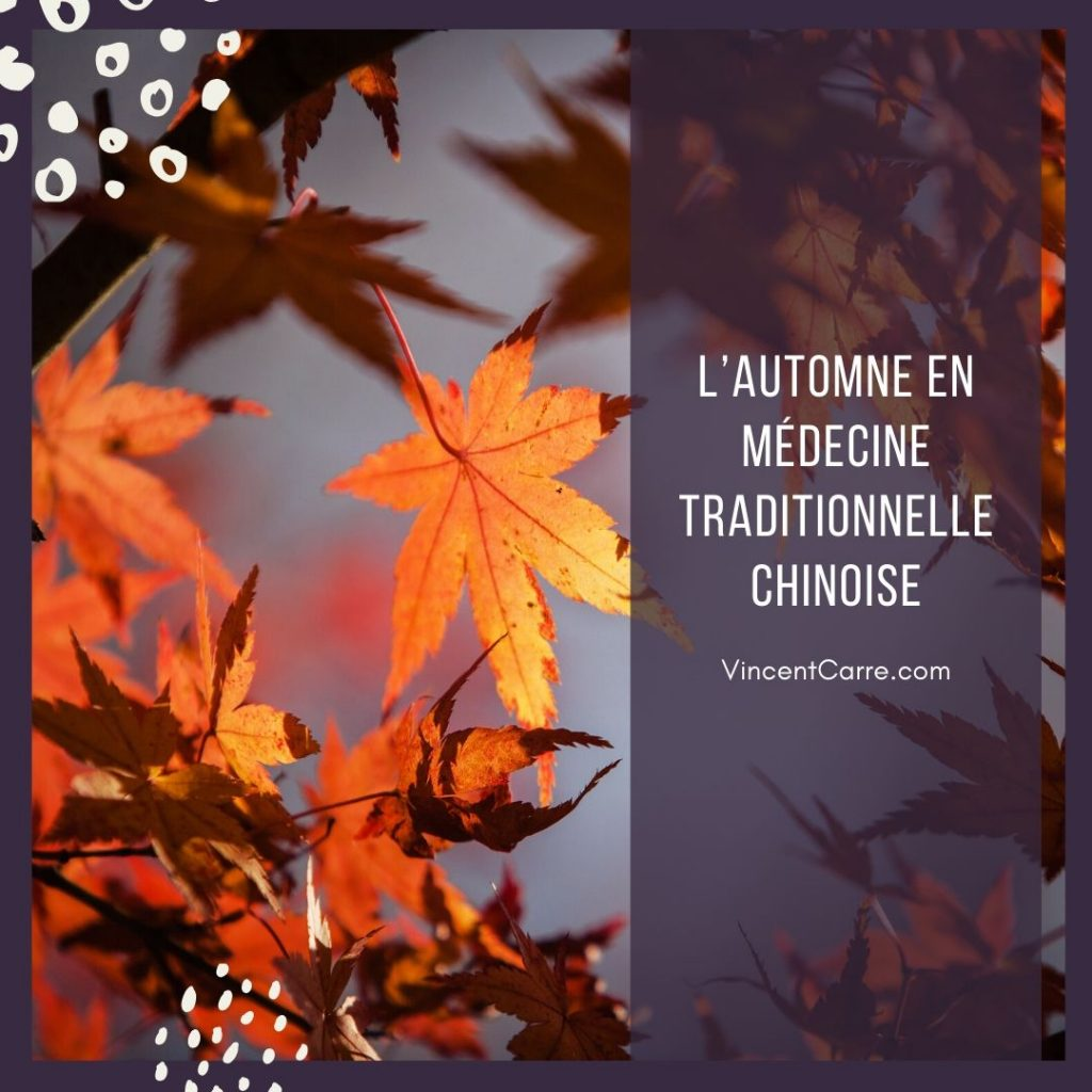 l'automne en mtc